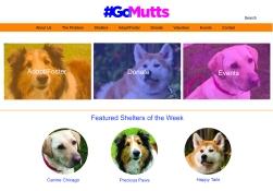 GoMutts_WebsiteAesthetics-02